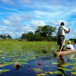 Mokoro trip in the Delta