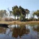 camping nel delta