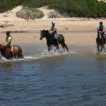 mossel bay a cavallo