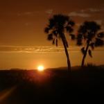palmwag tramonto