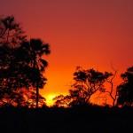 tramonto chobe